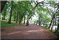 SP0386 : Footpath along the banks of Edgbaston Reservoir by N Chadwick