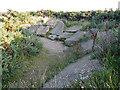 NJ1669 : Trackways Display by Anne Burgess