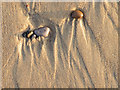NJ1971 : Patterns in the Sand by Anne Burgess