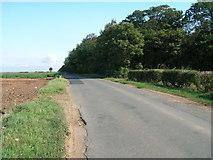 SE5114 : Whiteley Road by JThomas