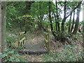 TL6348 : Footbridge by Keith Evans