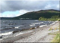 NN6557 : Waves breaking on Loch Rannoch beach by Russel Wills