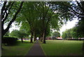 SP0487 : Tree lined path, Summerfield Park by N Chadwick