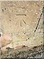 NT9167 : Bench Mark, St Abbs by Maigheach-gheal
