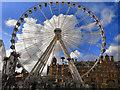 SJ8398 : The Manchester Wheel, Corporation Street by David Dixon