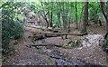 TL7906 : Natural Bridges by Roger Jones