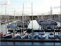 SZ3394 : Lymington Yacht Haven by David Martin