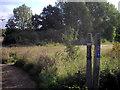 TL6320 : Flitch Way Sign near Chelmsford Road A130 by PAUL FARMER