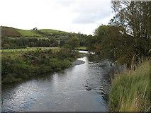 SN8780 : The River Wye (Afon Gwy) by David Purchase