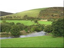 SN9273 : The River Wye (Afon Gwy) south of Llangurig by David Purchase