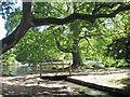 TQ5901 : Bridge at Hampden Park by Oast House Archive