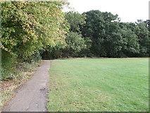 TQ3870 : Path beside Summerhouse Wood by David Anstiss