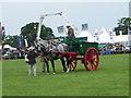 ST8324 : Working Heavy Horse Class by Maigheach-gheal