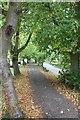 SU4691 : Cobbled path on the causeway by Bill Nicholls