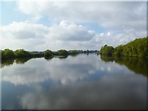 SJ6889 : Rixton, Manchester Ship Canal by Mike Faherty
