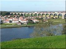 NT9953 : Royal Border Bridge by Russel Wills