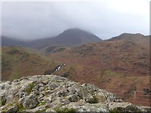 SH6554 : Rocky outcrop at the Nant Gwynant viewpoint [1] by Christine Johnstone