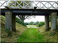 NX1161 : Castle Kennedy Gardens by Andy Farrington