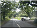 SJ3475 : Badgers Rake Lane by Colin Pyle