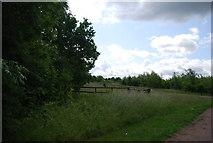 TQ5584 : Grassland, Bonnett's Wood by N Chadwick