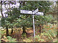 TM3446 : Roadsign on Melton Road by Adrian Cable