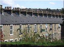 SD8432 : Burnley - chimney pots on Hobart Street by Dave Bevis