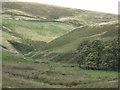 SK0069 : River Dane valley below Holt  by Robin Stott