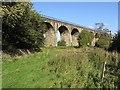 NS9876 : Avon Viaduct by Richard Webb