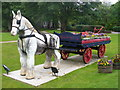 NB4233 : Putting the Horse Before the Cart by Colin Smith