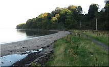 NT0280 : Beach, Carriden by Richard Webb