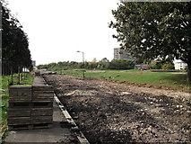 TQ3377 : Path in Burgess Park. by David Anstiss