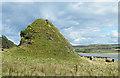 NS0558 : Haystack Rock by Anne Burgess