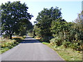 TM3546 : Road to Butley & Boyton & footpath to Melton Road by Adrian Cable