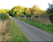 SK9341 : Up Minnett's Hill by Andrew Tatlow