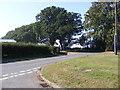 TM3545 : Woodbridge Road, Hollesley by Adrian Cable