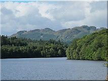 NN9357 : Loch Faskally by william