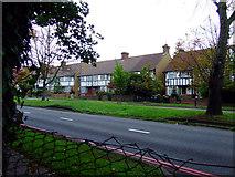TQ1979 : Houses on North Circular Road by Thomas Nugent