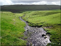 SD8970 : Thoragill Beck below the road by Andrew Curtis