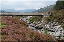 NN8596 : Last bridge over the Feshie by Jim Barton