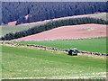 NO1951 : Shepherd in a Land Rover by Maigheach-gheal