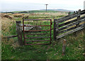 SD9610 : Gate on Boothstead Edge by michael ely