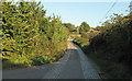 TL3702 : Fishers Green Lane by Roger Jones