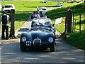ST7475 : C-Type Jaguars, 'Spirit of the 60s' 02 October 2011 Dyrham Park by Brian Robert Marshall