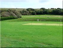 TQ3303 : Cricket ground, East Brighton Park by nick macneill