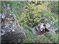 SE5288 : Climber on Peak Scar by Jonathan Thacker