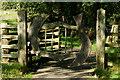 SH5947 : Gate on the Path, Beddgelert, Gwynedd by Peter Trimming
