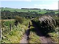 NZ0860 : Track south of Lumley's Lane by Andrew Curtis