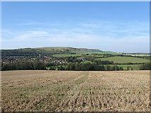 TQ5203 : Longbridge Laine (1) by Simon Carey