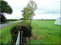 SJ6060 : Pasture by Long Lane by Jonathan Billinger
