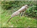 TF9528 : Grasshopper sculpture, Pensthorpe Park, Norfolk by pam fray
